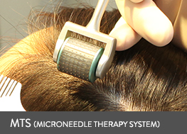mts(microneedle theraphy system)